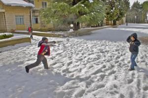 Ein Gruss aus Schnee